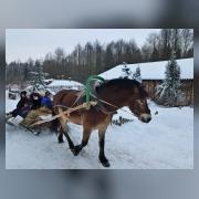С ветерком по деревне Дудудки