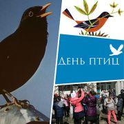Заставка Дня птиц